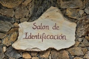 salon de indentificacion